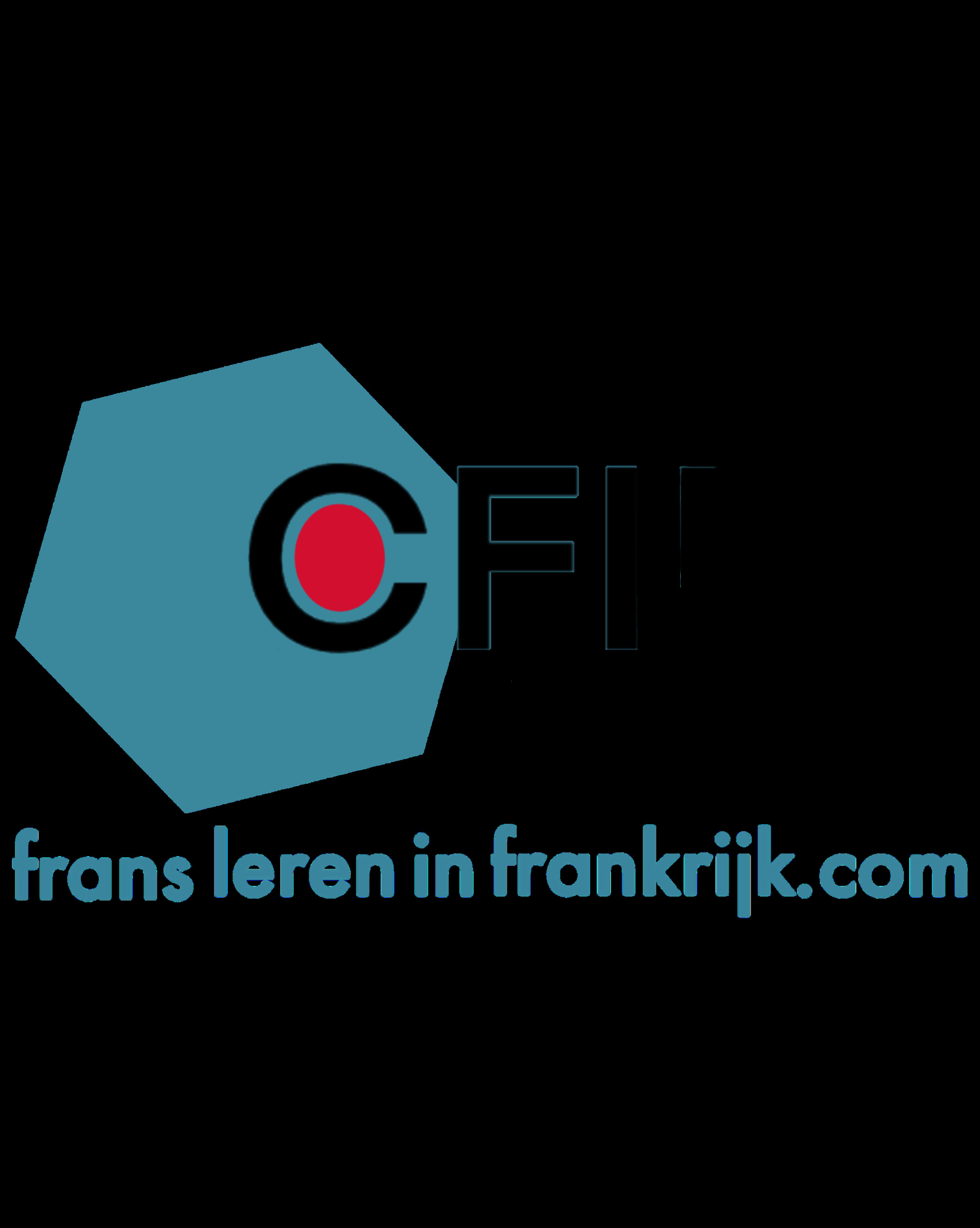 Frans leren in Frankrijk